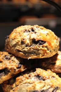 The Stone Oven's blueberry scones.