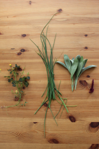 From left, foraged wood sorrel, chives, sage and quinoa flowers, all of which Umansky used to garnish his dish.